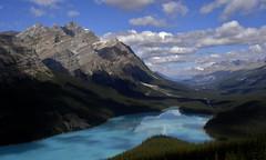 Au Coeur des rocheuses Canadiennes (¡! Nature B■x !¡) Tags: nature paysage canada rocheuses landscape forêt montagnes lac peyto alberta parc national banff réflexions