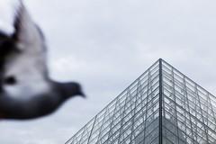 PARIS - LOUVRE (FIA El Yelmo) Tags: 35mm avenidachampselysées cadeados laseine louvre museu natal paris quartierlatin rio sirleyfranco tiltshift