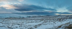 January Snow 2017 077-Pano -  Wessenden Head (Mark Schofield @ JB Schofield) Tags: huddersfield pennines pennineway moors moorland peat nationalpark thenationaltrust marsden scammonden pulehill marchhaigh wessenden wessendenvalley meltham wessendenhead reservoir water watershed snow winter landscape bog rock ice outdoors open space panoramic canon 5dmk3 holmemoss mast