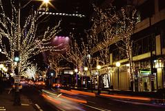 Holiday Lights in Seattle (marq4porsche) Tags: seattle washington united states street light tree lights long exposure streaks building architecture cars sunstars canon eos 3 ef 50mm 12 l kodak ektar 100 film analog