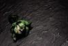 Brussels Sprouts (Isengardt) Tags: brussels sprouts kohl cabbage rosenkohl pflanze plant essen zutat ingredient condiment minimalismus minimalism stilllife stillleben muster struktur pattern structure background green grün hintergrund blätter gemüse vegetable veggie olympus omd em1 1250mm