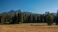 IMG_6843-Edit (dangerismycat) Tags: california yosemite yosemitenationalpark tuolumnemeadows cathedralpeak unicornpeak