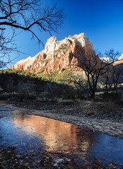 the sentinel (almostsummersky) Tags: rockformation winter puddle reflection brush orange rocks trees trail virginriver courtofthepatriarchs travel zioncanyon red zion utah nationalpark zionnationalpark water mountain frozen springdale unitedstates us
