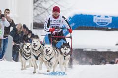 dogsled2017-23