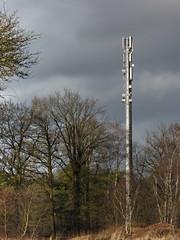 Großmoorer Funkturm im Seitenlicht. (Wallus2010) Tags: hdr dri panasonic tz61 travelzoom technik gsm dxo rw2 raw dng negativ funkmast handy grosmoor germany wald bäume