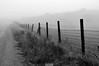(casildaezquerro) Tags: blanconegro blackwhite monochrome monocromatico minimalist minimalista landscape paisajes niebla fog