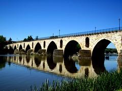Puente de Piedra, Zamora, Castilla y León, España. (PGARCIA.) Tags: zamora románico ríos ríoduero castillayleón españa spain agua