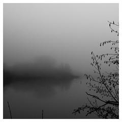 Rien à l'horizon... (objet introuvable) Tags: blackandwhite bw arbres silhouette eau étang fog trees tree landscape lumixgx8 lake noiretblanc nb nuages hiver water brouillard winter