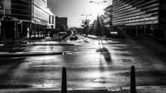 after the rain (ToDoe) Tags: rain street building reflection reflexion spiegelung bw schwarzweis schwarzweiss strase strasenbahngleise häuser poller gegenlicht contrejour backlight