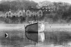 Mist over the pill (Explore) (Jason Davies Photography) Tags: castlepill milfordhaven nikonphotography nikon nikond5300 d5300 nikor18105f356 outdoors outdoor outdoorphotography misty water westwales boat monochrome mono blackandwhitephotography houses trees tranquillity serene visitpembrokeshire visitwales jasondaviesphotography reflections photography landscapephotography landscape explore niksilvereffex nikcollection