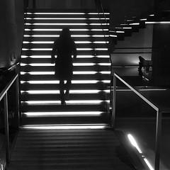 (Assun) Tags: bnw milano milan silueta escales escaleras febrer bn bw noiretblanc