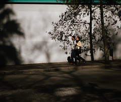 Framed by tree 3 (Vincent Albanese) Tags: road street winter people woman plants sun man colour tree eye window glass bike fuji shadows emotion humanity sydney hipster inspired streetphotography australia explore fujifilm colourful moment discover decisive atelier xt1 xf35mm