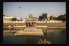 Temple Tank (sureshs!) Tags: canon chennai garuda acharyas triplicane utsavam parthasarathytemple ghosti
