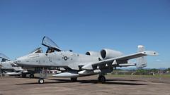 Wily Warthog (likrwy) Tags: aircraft aviation military airforce usaf fairchild warthog a10 a10c 780651