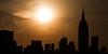 Early morning flight silhouette. (dansshots) Tags: nyc newyorkcity orange silhouette skyline skyscraper sunrise earlymorning empirestatebuilding nycskyline newyorkcityskyline earlymorningsun orangesun skylinesilhouette nikond3 newyorkskyscraper nycsilhouette sunriseovermanhattan empirestateofmind dansshots