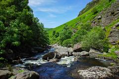 Gorge ([Scott]) Tags: rock wales river gorge towy tywi