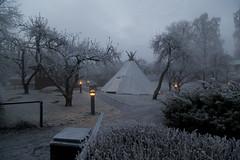 Lavvo in the morning (Beathe) Tags: nesodden sunnaasrehabilitationhospital fog winter morning img9023