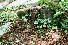 25470007 (aLMachtunG) Tags: analog 35mm film prague czechrepublic europe canonae1 canonfd50mmf18 canon grave jesus inri graveyard fujisuperiaxtra400 fuji