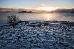 Helsinki2017_01 (SkowronTheDestroyer) Tags: helsinki sunrise winter