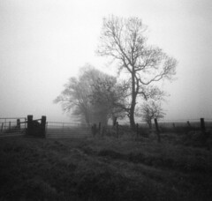 Unrelenting Cloud (wheehamx) Tags: mist 6x6 pinhole 3200