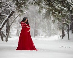 Joy (Portraits by Suzy) Tags: pregnant mother motherhood family love pregnancy baby maternity child children beautiful happy happiness white snow queen gameofthrones color red nature natural light forest canon 6d 200nn pretty joy emotion moment candid winter