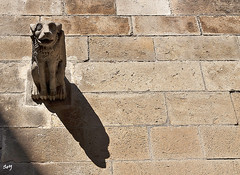 La sombra. (svet.llum) Tags: barcelona catalunya cataluña catedral barriogótico gótico ciudad arquitectura escultura