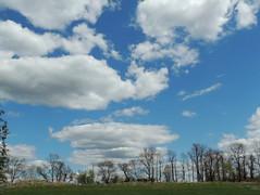 Cumulus humilis (Anita363) Tags: sky cloud clouds pennsylvania pa cumulus cumulushumilis