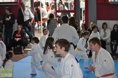 Judo-habay002
