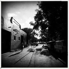 untitled (Albion Harrison-Naish) Tags: bondi sydney streetphotography australia newsouthwales bondibeach unedited iphone sooc mobilephotography straightoutofcamera iphoneography sydneystreetphotography hipstamatic aobwfilm iphone5s lowylens albionharrisonnaish