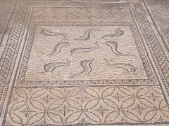P5261310 (lnewman333) Tags: africa ancient northafrica mosaic historic worldheritagesite morocco fez maroc maghreb fes volubilis romanruins unescosite 1stcenturyad