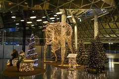 2016 MyZeil Frankfurt - Weihnachtsdekoration im IV. Stock (mercatormovens) Tags: weihnachten xmas weihnachtsdekoration weihnachtsmarktfrankfurt advent myzeil frankfurt renntier weihnachtsbäume lichterketten