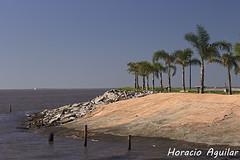 Playa en Olivos (Florián Paucke) Tags: paisaje olivos agua ecología ecosistema turismo humedal diversión biología naturaleza naturalista horizonte
