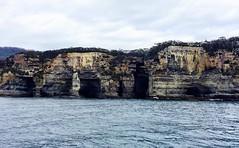 On the way to Fortescue Bay. Tasmania.