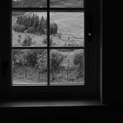 Burden (Aurora Gualtieri) Tags: window blackandwhite burden opeth silence trees autumn september leaves monochrome