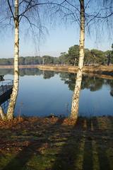 Herfst. (limburgs_heksje) Tags: nederland niederlande netherlands noord brabant beekse bergen safaripark dierenpark