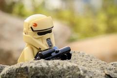 Scouting (yudho w) Tags: lego scariftrooper trooper minifigs minifigure rogueone starwars disney