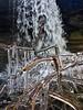 Icy (C McCann) Tags: sandcutbeach sandcut jordanriver bc britishcolumbia canada vancouverisland ice icy waterfall branch icecovered iced