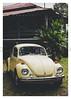 17_02_05_198p (2) (Quito 239) Tags: käfer volkswagen 1971volkswagen 1971volkswagensuperbeetle superbeetleconvertible vw bug vocho escarabajo puertorico haciendaigualdad volky
