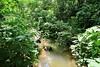 IMG_3624 (JoStof) Tags: indonesia bali munduk hike jungle indonesië idn