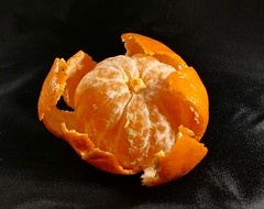 Mandarin peeled (Englepip) Tags: mandarin peel macro small detail pith peelsegment whole blackbackground indoor