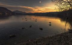 Avigliana, Lago Grande (Fil.ippo) Tags: naturalpark avigliana lake lago riservanaturale tramonto sunset water filippo filippobianchi piedmont piemonte sky clouds d610 hdr peace