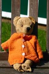 well loved (MPJ2006) Tags: bear outdoors teddy wooly softtoy