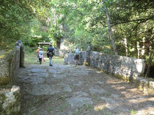 Fotografía Paquita Valdi Marcha 391 27 y 28 de Junio Parque Natural de la Encina de Lastra Ourense (11)