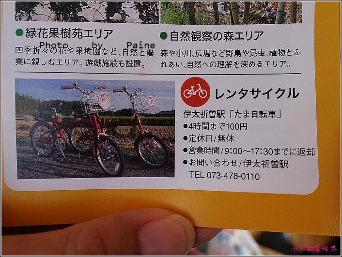 和歌山大池遊園-平池綠地公園 (57).JPG