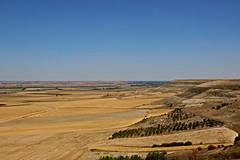 Tierra de Campos (carmoreman) Tags: canon bodegas paramo palencia castillaylen llanura tierradecampos camposdecastilla autilla