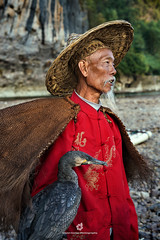 Portrait of a Cormorant Fisherman (fesign) Tags: adult bird chinaeastasia chineseculture colourimage cormorant daylight fisherman fulllength guilin oneanimal onemanonly oneperson oneseniorman outdoors people photography portrait pride rurallife senioradult standing traditionalclothing vertical water woodmaterial xingping yangshuo