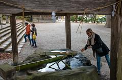 Village historique de Shirakawa-gō (kingfisher001) Tags: gasshozukuri ghasso gifu japon kanazawa ono shirakawago sho shokawa takayama village blanche district historiques maisons pente pentus rivière toitdechaume type vallée villages