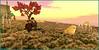 Piou piou ! (Tim Deschanel) Tags: tim deschanel sl second life weeville oyster bay couleur color licorne exploration landscape paysage ile isle sera bellic lick sim design grace grace81 capalini