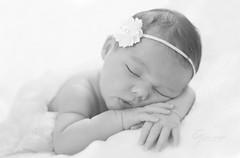 DSC_2292 copy (Claire Jaggers Photography) Tags: infant newborn baby girl indoors portrait umbrellalight sidelight nikon nikond700 d700