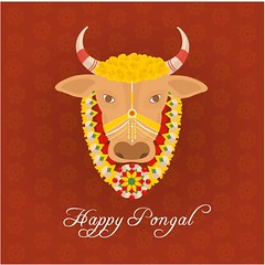 free vector Happy Pongal Day 14th January 2017 With Cow face Background (cgvector) Tags: 14thjanuary 2017 agriculture asian banana banner card celebration coconut colorful creative culture decoration design family farmer festival floral food fruit grain greeting happy health hindu holiday india indian mud pongal poster pot prosperity rangoli religious rice sankranti shiny south sugarcane sun sweet tamil thankful traditional flower illustration tradition vector wheat